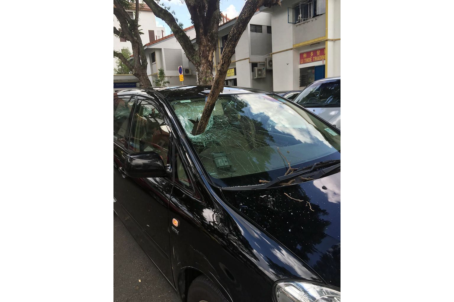 The falling tree branch pierced the windscreen of the car (above), which was at a carpark near Block 119 Aljunied Avenue 2 last Saturday morning. The driver, a man in his 50s, suffered gashes on his right shin. The Marine Parade Town Council is conducting