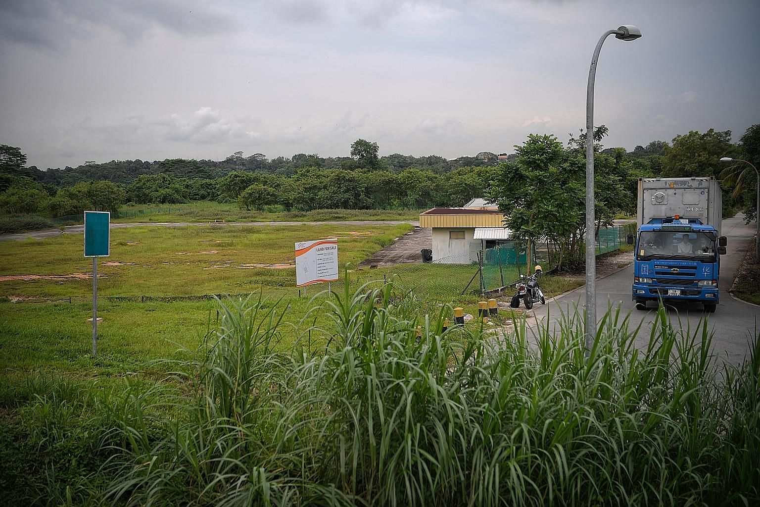 The land (left) set aside for bean-sprout farming at Sungei Tengah Road. The bean sprout is nutritious and used in many local dishes. ST PHOTO: MARK CHEONG