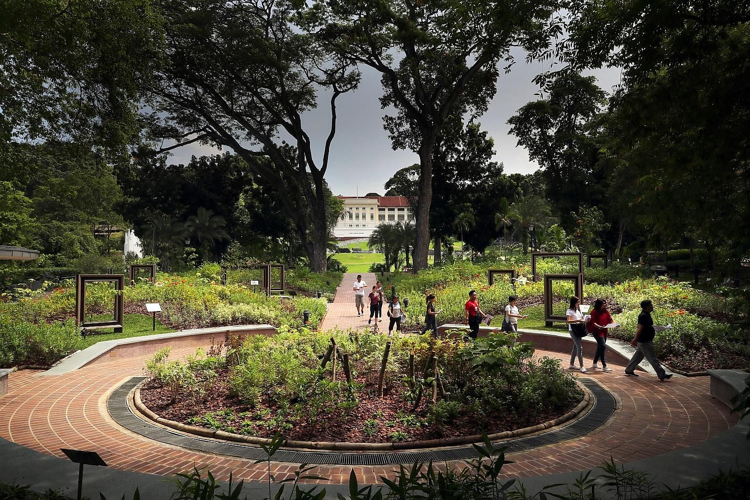 Left: Farquhar Garden was named after Major-General William Farquhar, the first British Resident and Commandant of Singapore, who had a keen interest in natural history. This garden features some of the species he found noteworthy, such as guava, tar