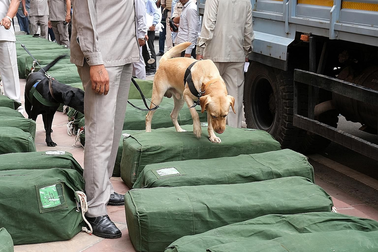 Security staff using a sniffer dog to inspect sacks of budget papers at Parliament House in New Delhi yesterday.
