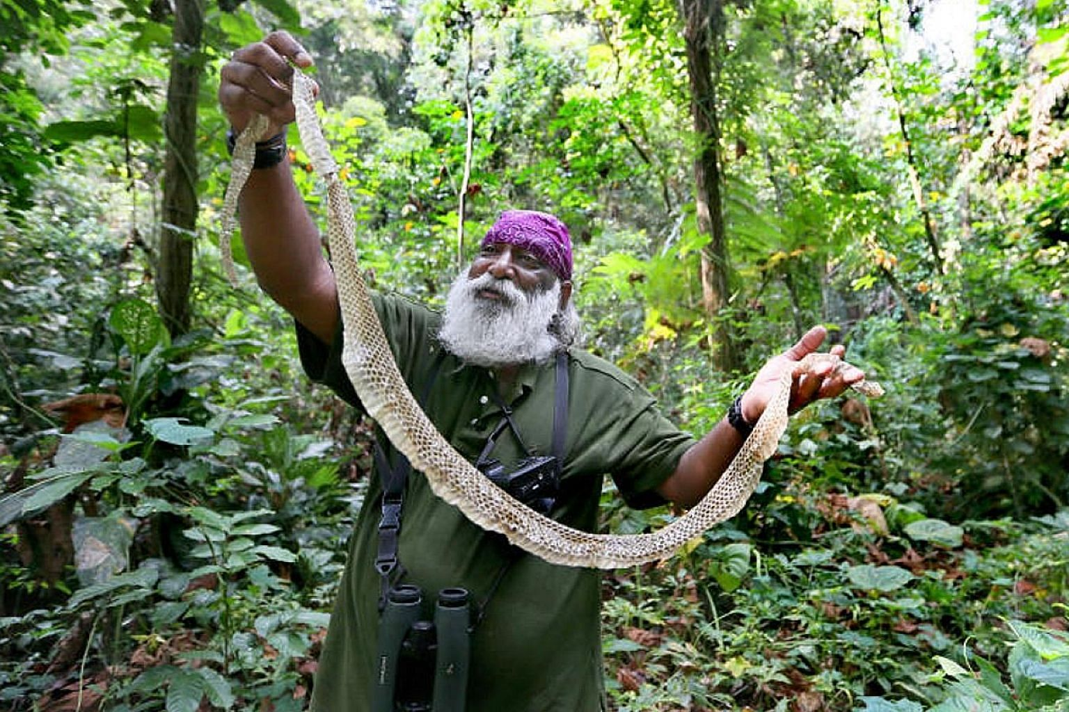 Wildlife expert and conservationist Subaraj Rajathurai holding up the shed skin of a black spitting cobra that he found during a walk at MacRitchie Reservoir earlier this month. He hopes that the environment will continue to be an important issue und