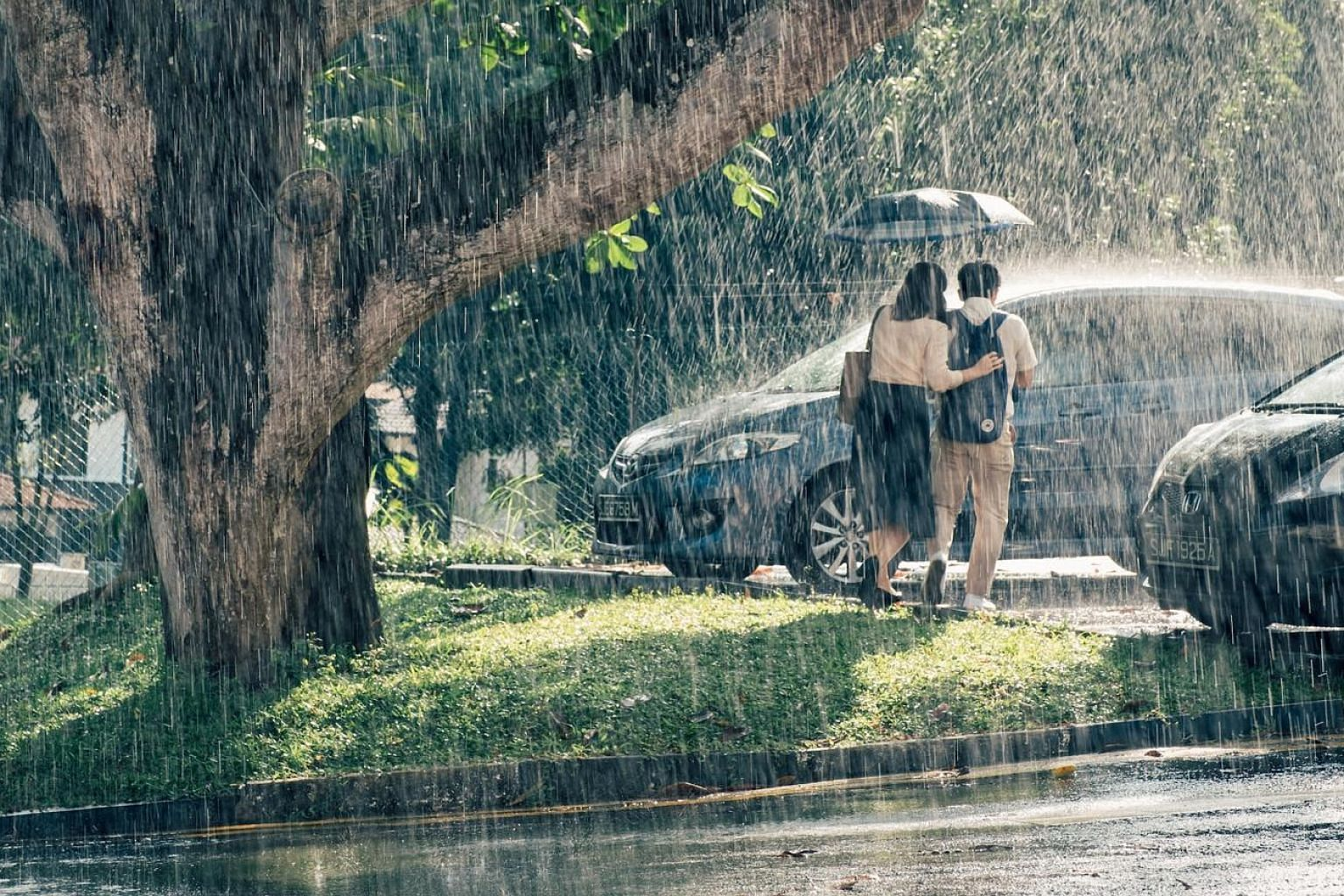 Wet Season tells the story of a Chinese-language teacher struggling with a failing marriage, who forms a life-changing friendship with a student.