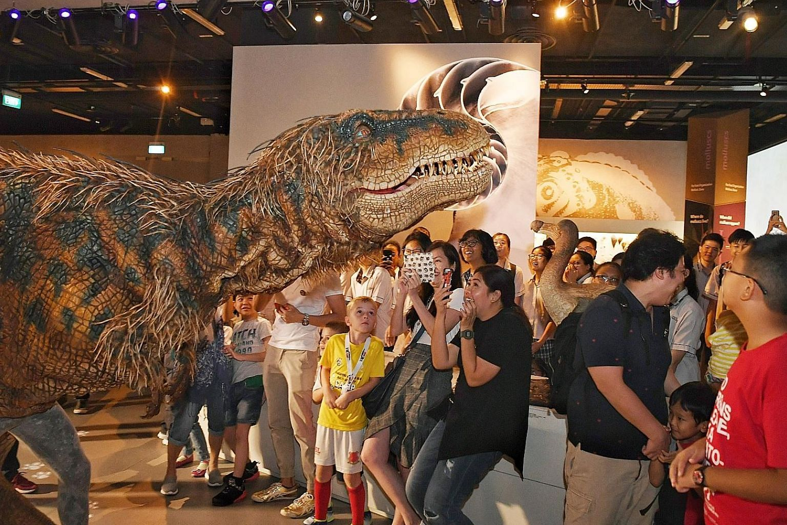 The baby Tyrannosaurus Rex, controlled by British performer Neal Holmes, at the Lee Kong Chian Natural History Museum on Tuesday.