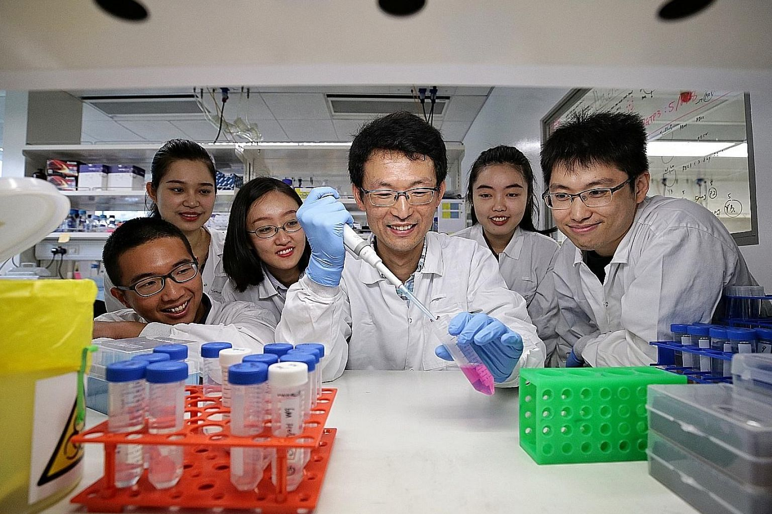 Professor Kang Zhou (centre) and Dr Xiaoqiang Ma (right) with team members (from left) Poon Ngayu, Liu Yurou, Liang Hong and Cui Xiaoyi. The team has developed a faster and cheaper way to create genetic material used in the research of disruptive agr