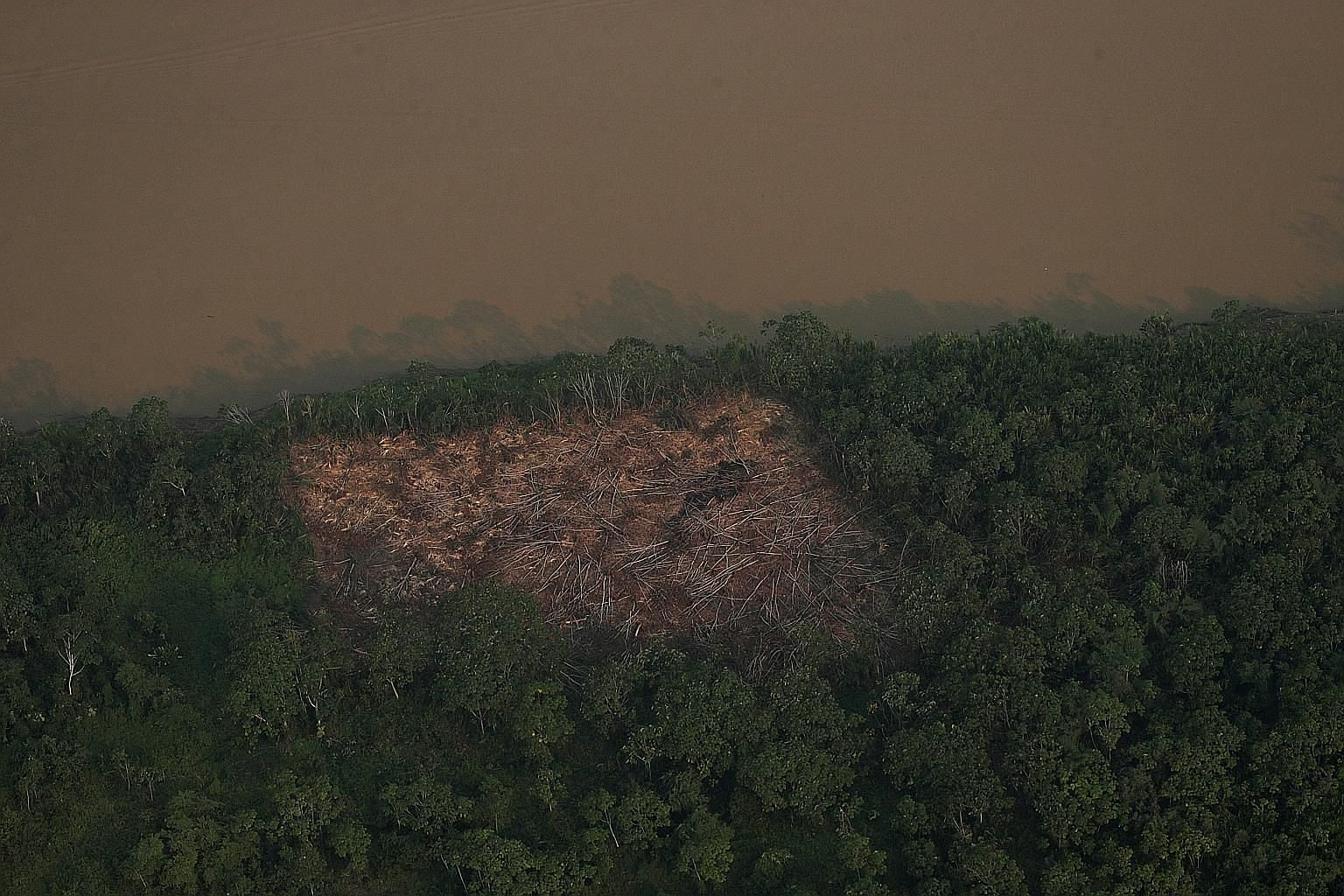 An aerial view of a deforested plot of the Amazon near Porto Velho in Brazil's Rondonia state on Wednesday. According to reports, the Amazon has experienced a record number of fires this year - the result of both drier conditions and intentional burn