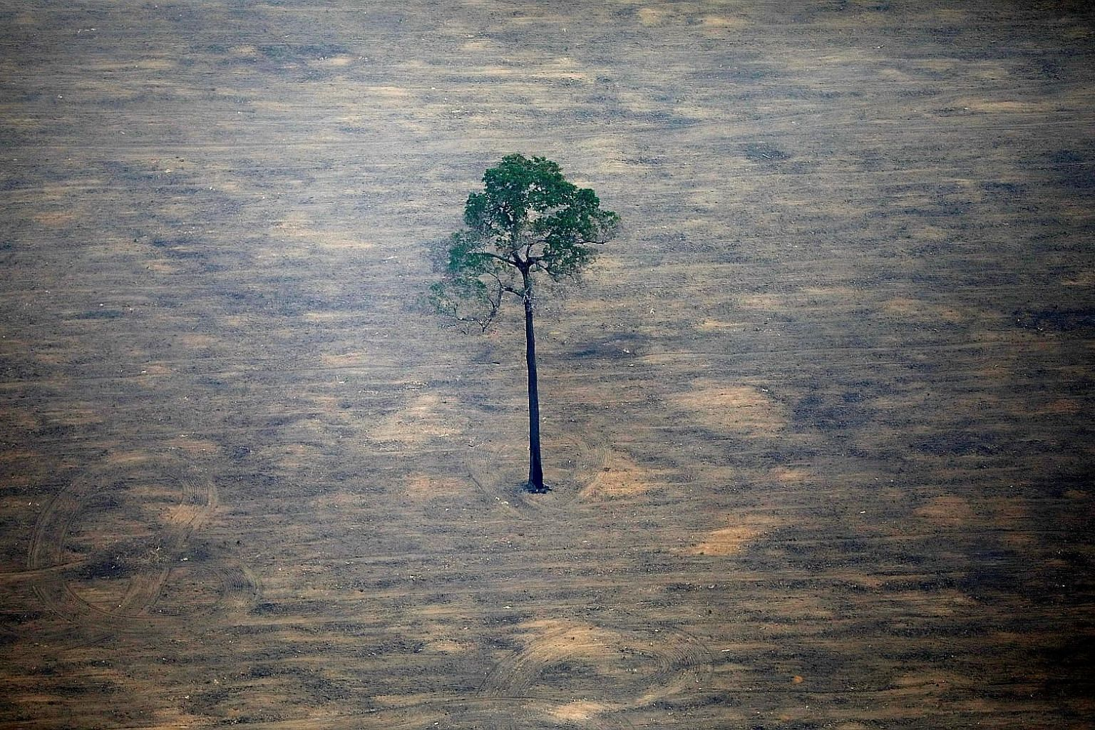 """A deforested plot of the Amazon in Brazil. Greenhouse gas reduction targets are still reachable, UN Secretary-General Antonio Guterres said, even as he warned that the world was """"losing the race"""" to avert climate disaster. PHOTO: REUTERS"""