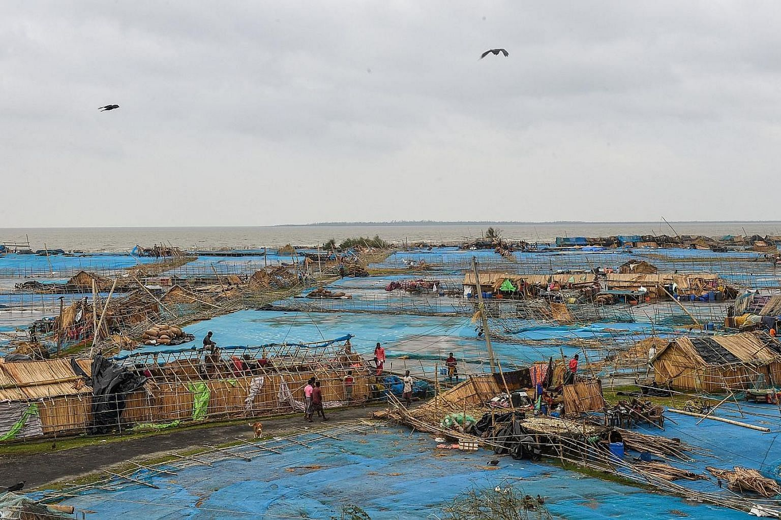 A fishing village in India reduced to rubble after Cyclone Bulbul swept the region late last Saturday. The cyclone killed 12 people in Bangladesh - 11 from falling trees - and 12 in India's West Bengal and Odisha states. Bangladesh's low-lying coast