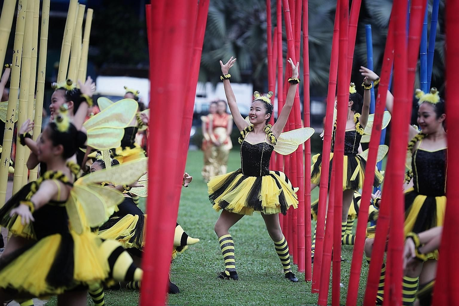 Above: Sixteen-year-old Loke Mun Len (centre), from The School of Dance, dressed as an energetic bumblebee during a performance at the Chingay 2020 media preview yesterday at the People's Association Headquarters in Jalan Besar. About 6,000 volunteer perf