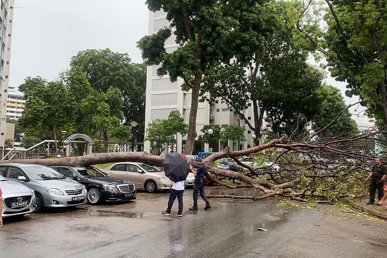 Heavy rain and strong winds hit parts of Singapore yesterday, stalling traffic and causing a tree to fall on a parked car. The incident in a Bedok North housing estate drew a crowd with their camera phones, said supermarket manager Joel Mabeo, 35, pa