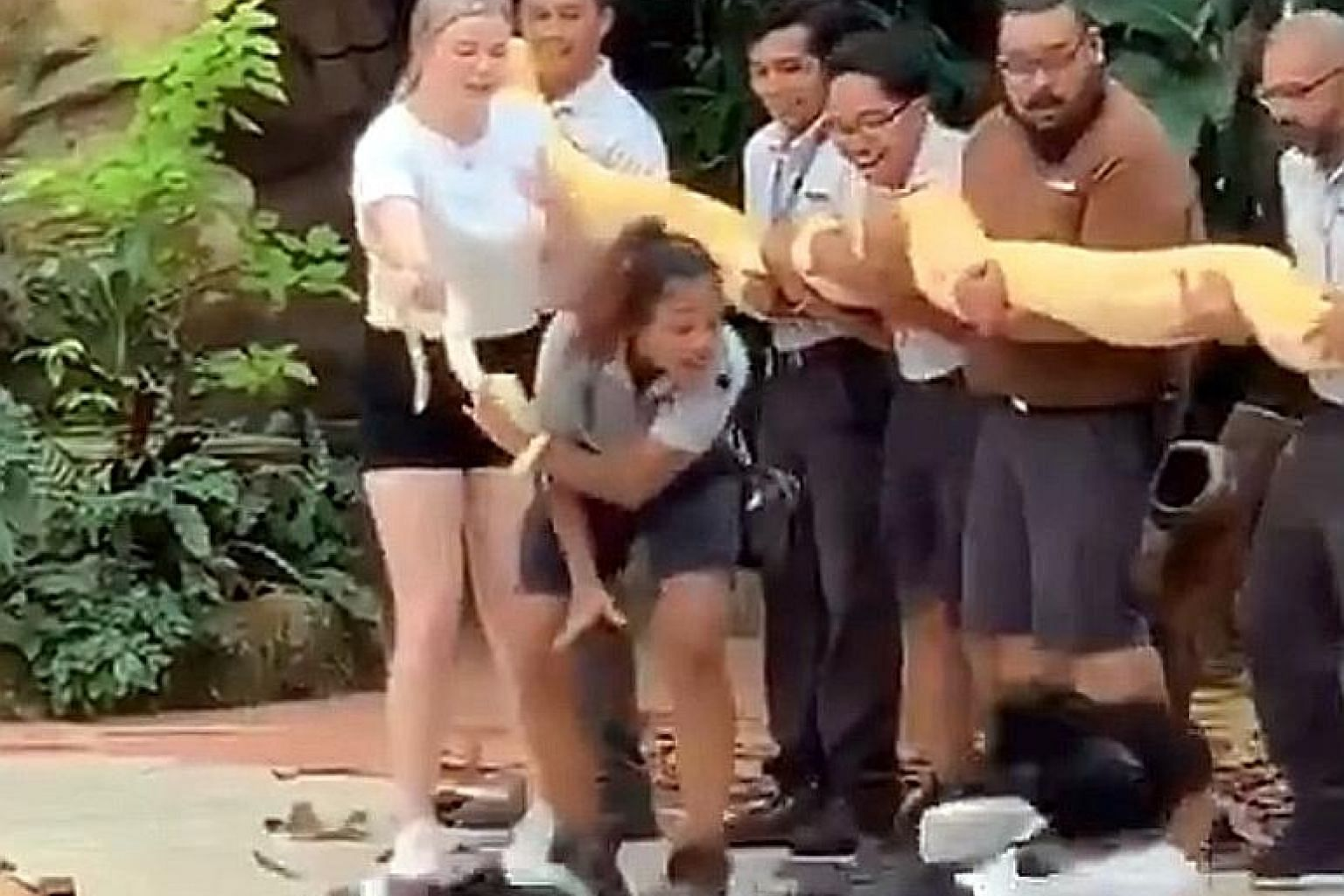 Topping the list of retweets is a clip of a woman who got so scared at the sight of a huge python at the Singapore Zoo that she fell to the ground while running away, with a dramatic tumble in between.