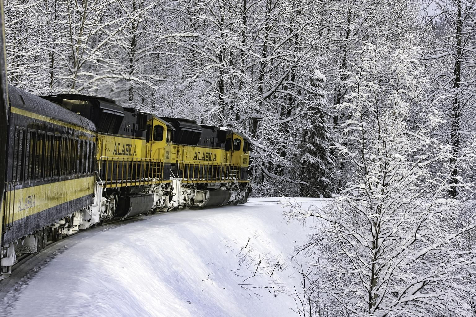 In Fairbanks in Alaska, one can (clockwise from top) go dog-sledding, soak in a hot spring or catch the aurora borealis or Northern Lights. Go on a 12-hour journey on Alaska Railroad's Aurora Winter Train to Fairbanks in Alaska and enjoy a magical wi