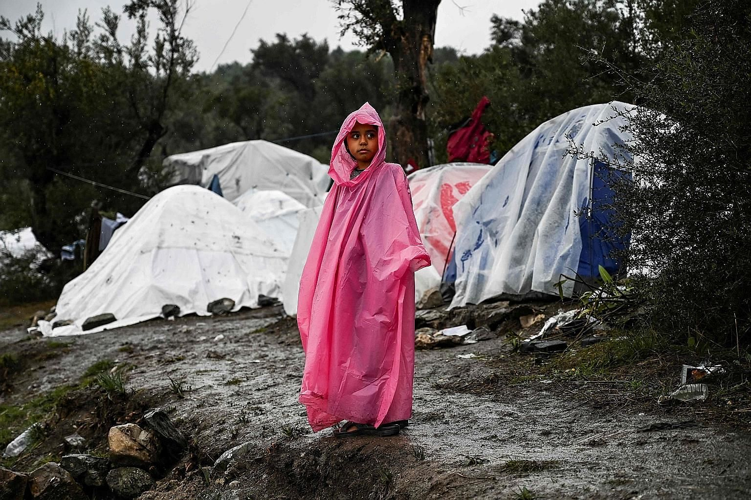 A refugee girl on the Greek island of Lesbos. The writers say that Britons' anxieties about the pace and scale of immigration, something that the Conservative Party and Mr Boris Johnson pledged during the general election to restrict, lie at the hear