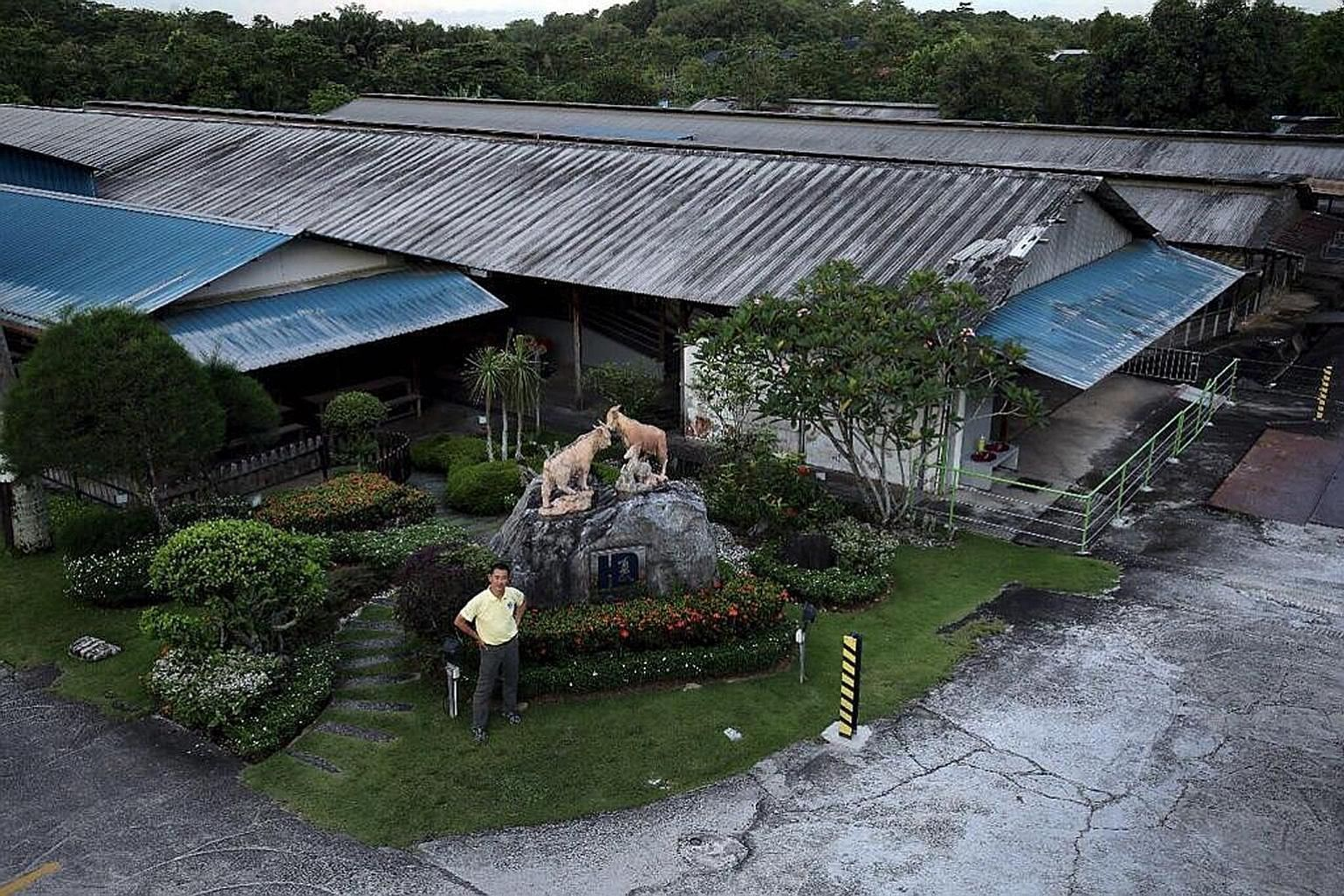 Left: Hay Dairies founder John Hay at his Lim Chu Kang farm, where goats are reared for their milk (above). The farm has been awarded the tender for a Neo Tiew Crescent land parcel. PHOTOS: COURTESY OF JOHN HAY, ST FILE
