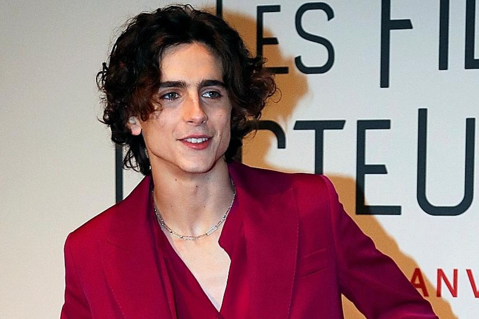 Timothee Chalamet, who stars in Little Women, can easily be mistaken for one of the sisters and that is his allure.
