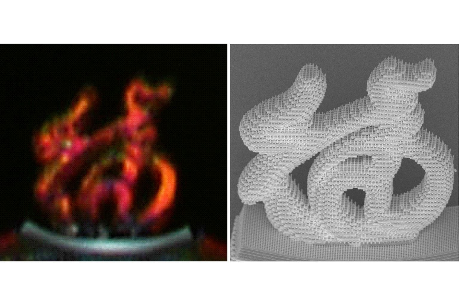 """An optical micrograph (left) and a scanning electron micrograph 3D image of the Chinese character for """"good luck""""."""