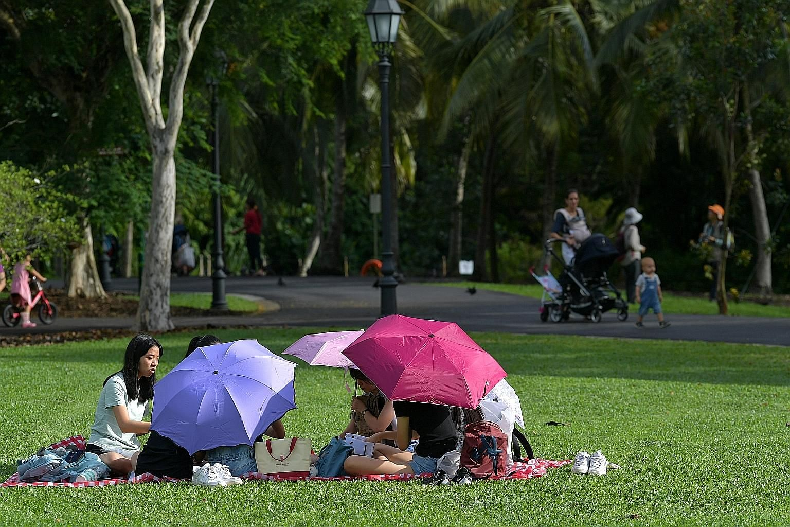 People having a picnic at the Singapore Botanic Gardens in December. There will be more warm weather ahead this month, with the daily temperature on most days expected to be between 24 deg C and 34 deg C.