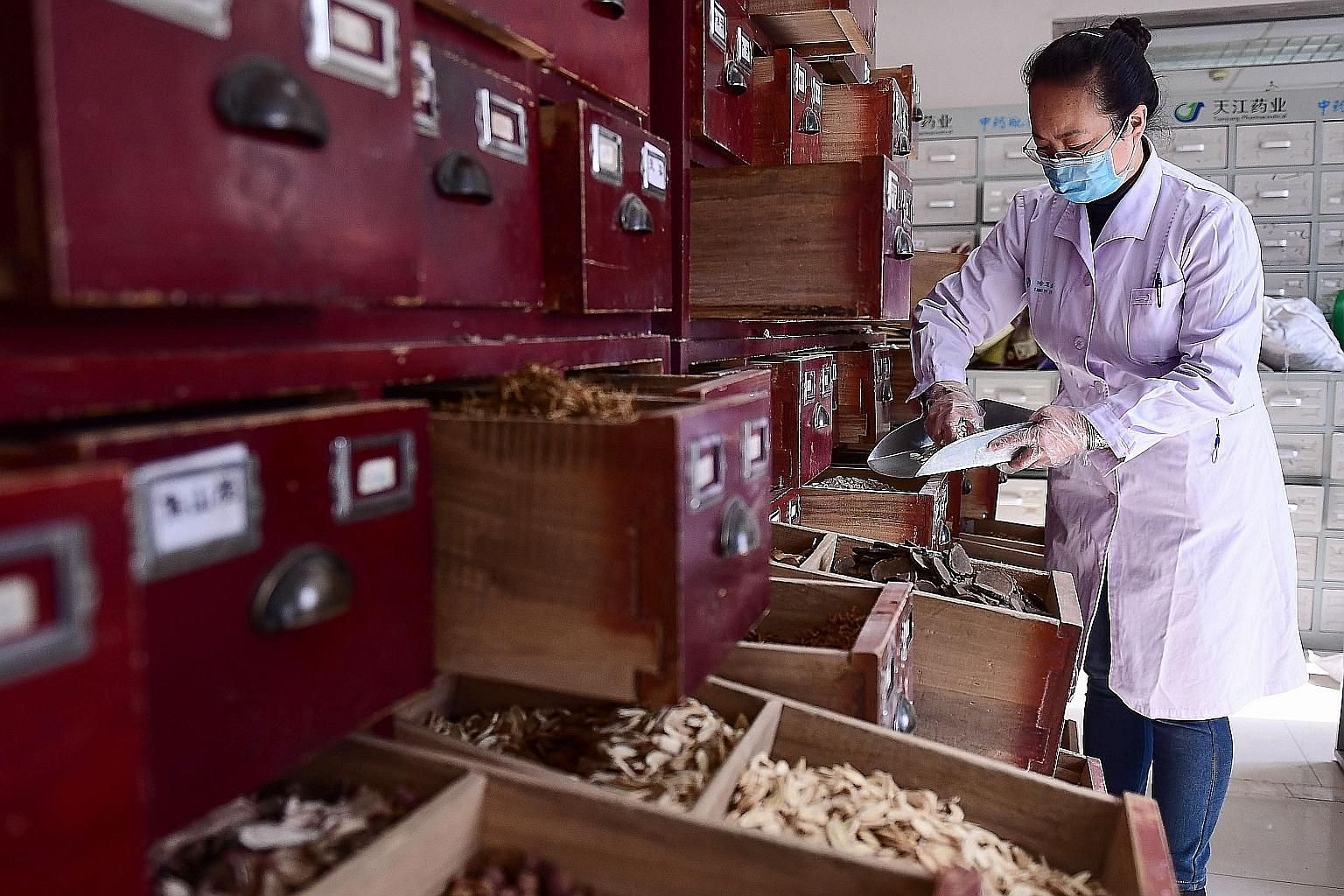 A staff member preparing traditional Chinese medicine at a Liaoning hospital on Thursday. China has turned to TCM along with Western treatment as part of clinical trials to overcome the coronavirus epidemic.