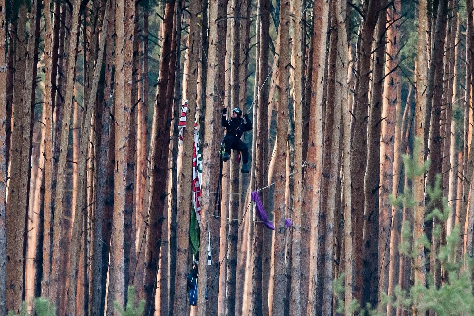 A police officer climbing a tree in a forest to remove a banner, presumably put up by environmental activists, and items that look like sleeping bags at the future Tesla Gigafactory construction site in Grunheide, near Berlin, last Friday. Germany's