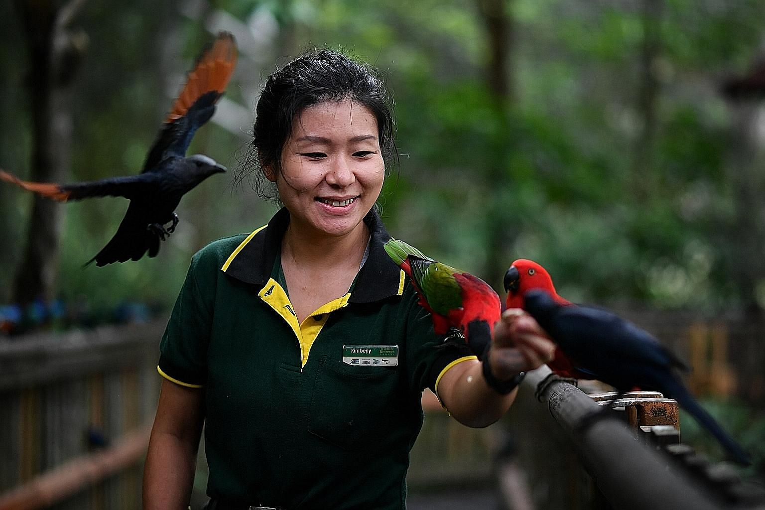 Jurong Bird Park junior birdkeeper Kimberly Wee, who picked up skills needed for her work through on-the-job training and courses, is looking forward to progressing to the next stage of her job under a new competency framework in zoology launched by