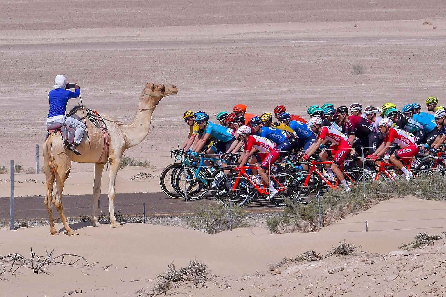 The pack rides during the third stage of the seven-stage UAE Tour from al-Marmoom to Jebel Hafeet on Monday. The last two stages were cancelled on Thursday. PHOTO: AGENCE FRANCE-PRESSE