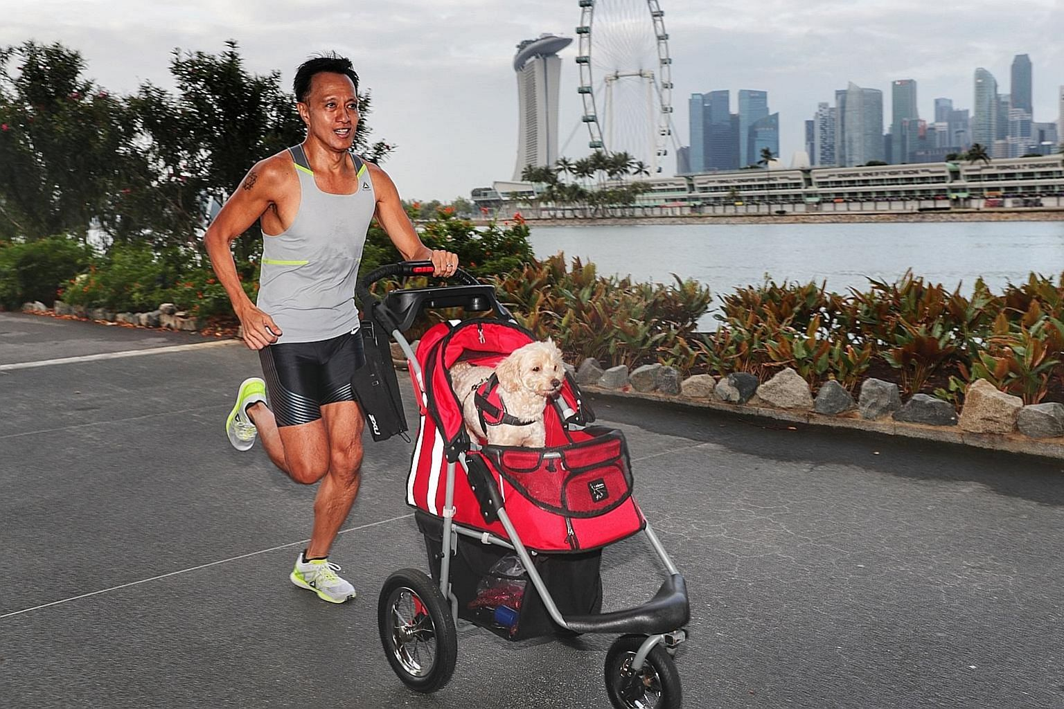 Head of sales Gil Madrid runs about 70km a week with his pet dog, Jack, in its pram.