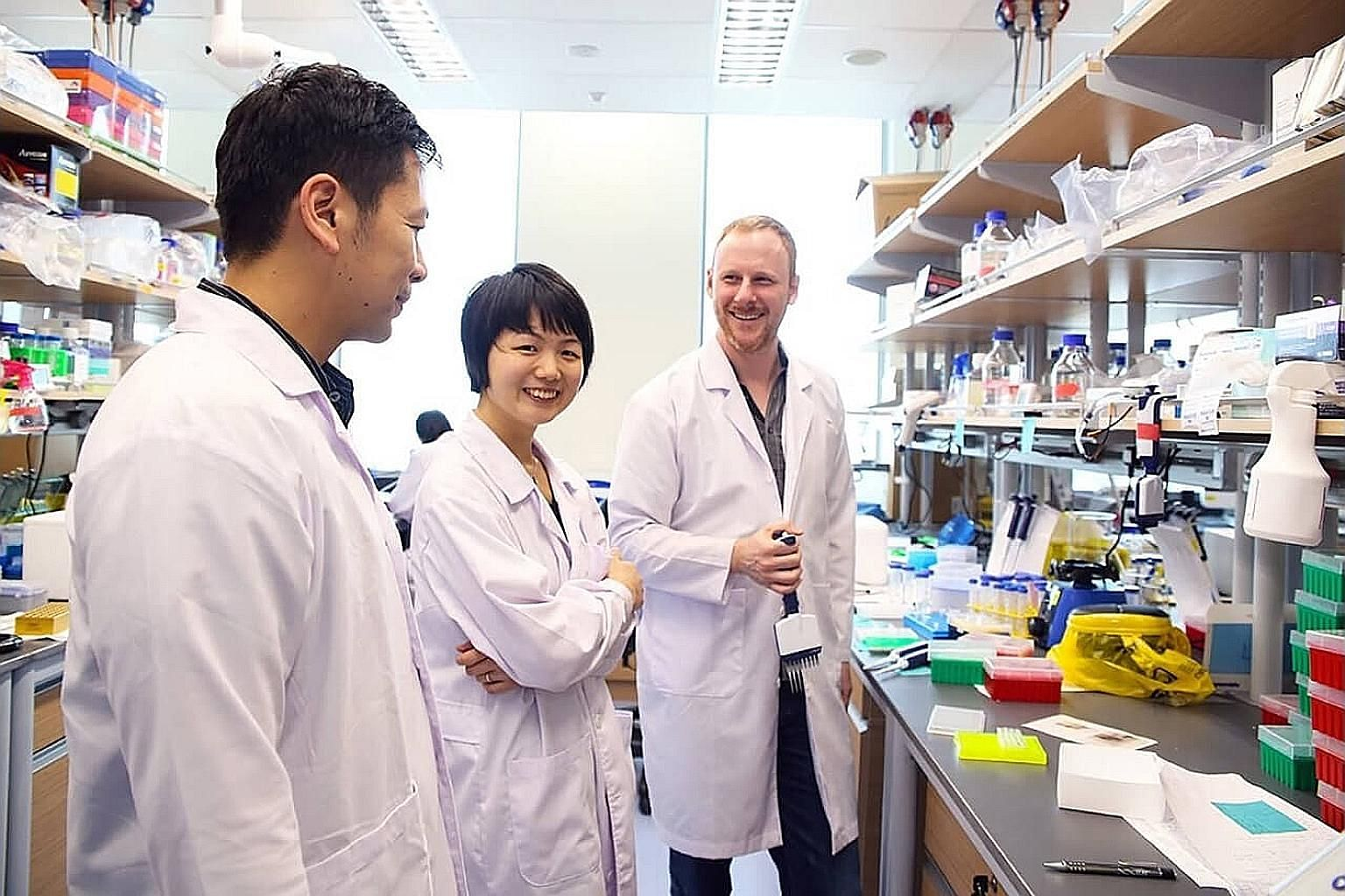 The co-founders of local start-up Proteona - (from left) Dr Shawn Hoon, Dr Wang Yingting and Dr Jonathan Scolnick - having a discussion in their laboratory in Singapore.