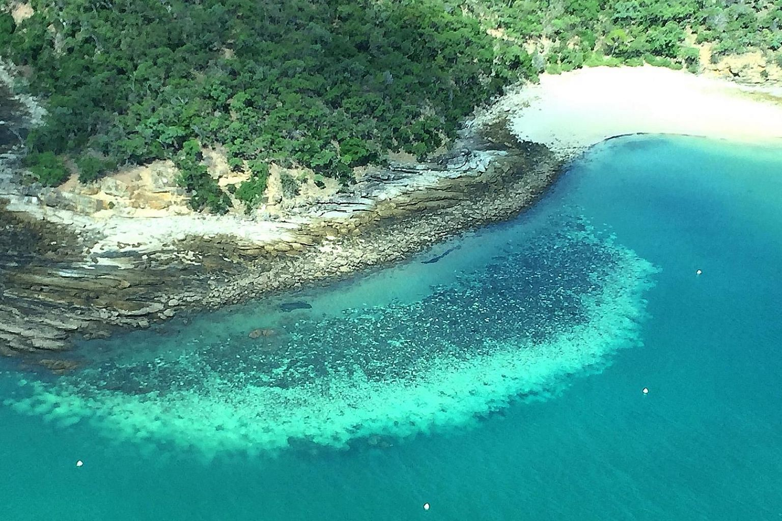 Coral scientist Terry Hughes conducting aerial surveys of Australian reefs. He recorded the various degrees of bleaching suffered by reef-building corals from about 150m above sea level.