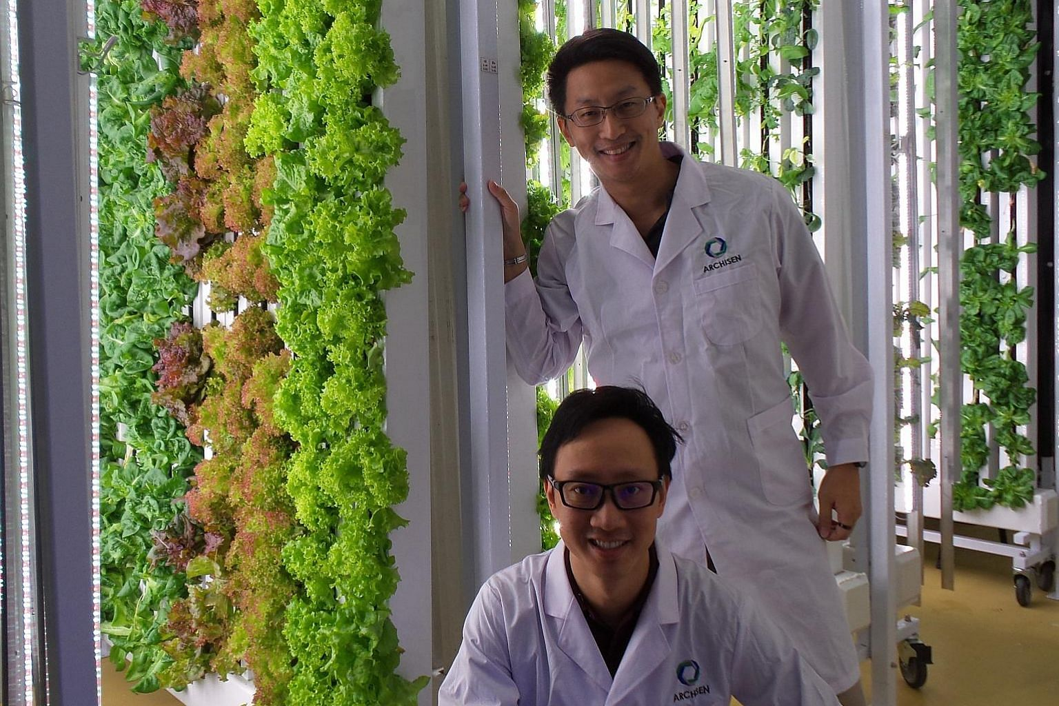 Start-up agritech company Archisen's co-founders Sven Yeo (standing) and Vincent Wei. Archisen designs, develops and operates systems and solutions to enhance the local production of fresh vegetables in urban cities.