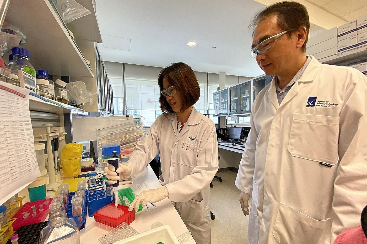 Above: Dr Wang Cheng-I (right) and Ms Eve Ngoh from A*Star's Singapore Immunology Network - in a photo taken before the circuit breaker period - and their team are working with Chugai Pharmabody Research from Japan to engineer the antibody for clinic