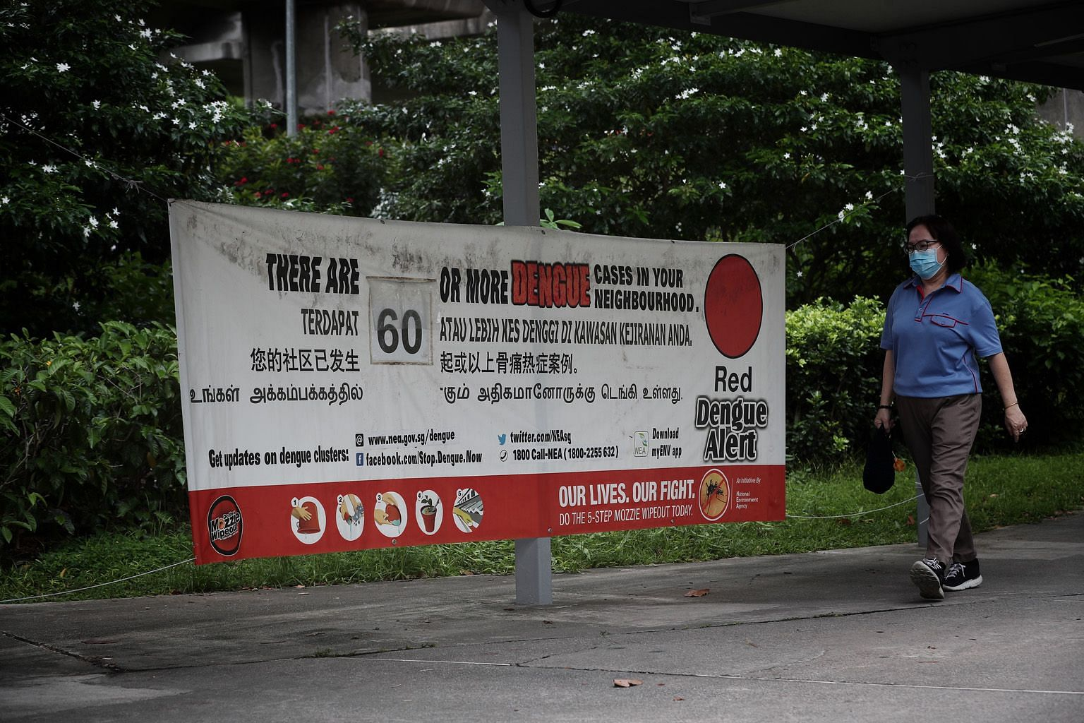 More than 300,000 bottles of mosquito repellent are being given out by polyclinics and general practitioner clinics. Those suspected of having dengue should apply the repellent regularly, said NEA. PHOTO: NEA NEA said 529 dengue cases were reported h