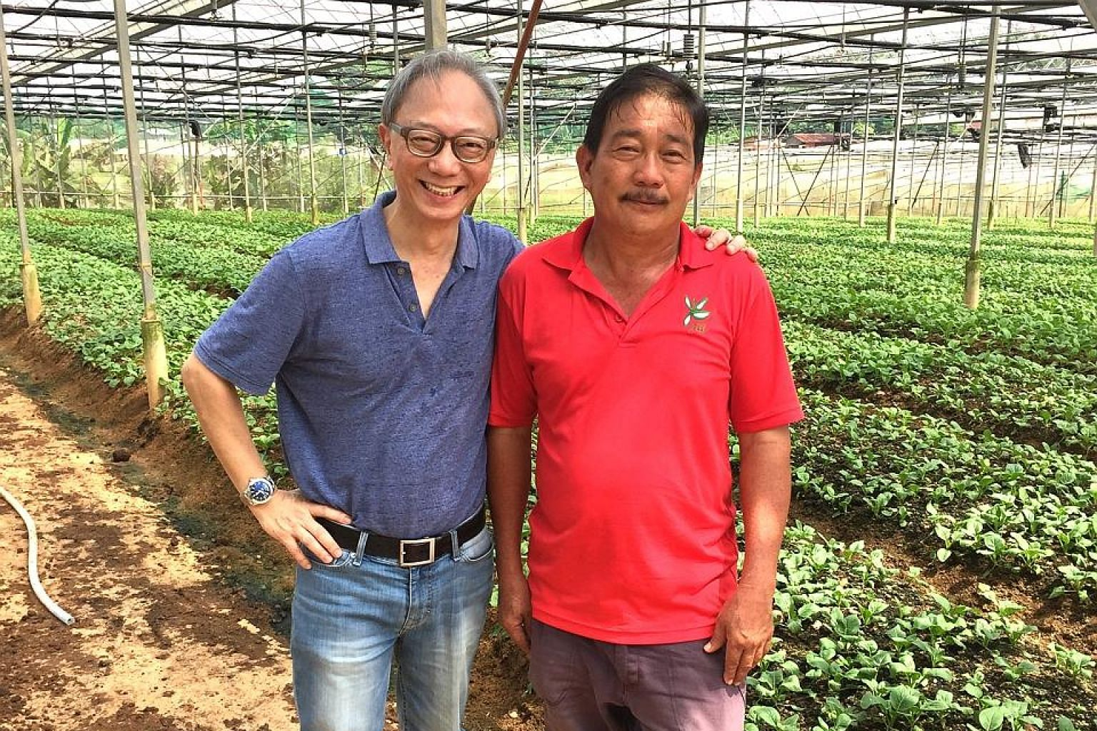 Public relations veteran Jimmy Tay (in blue) with Mr Alan Toh of Yili farm in Lim Chu Kang. The two men (right) surveying algal and duckweed bloom in a retention pond on the farm. Mr Tay in 2016 invested an undisclosed sum in Silicon Valley biotech s