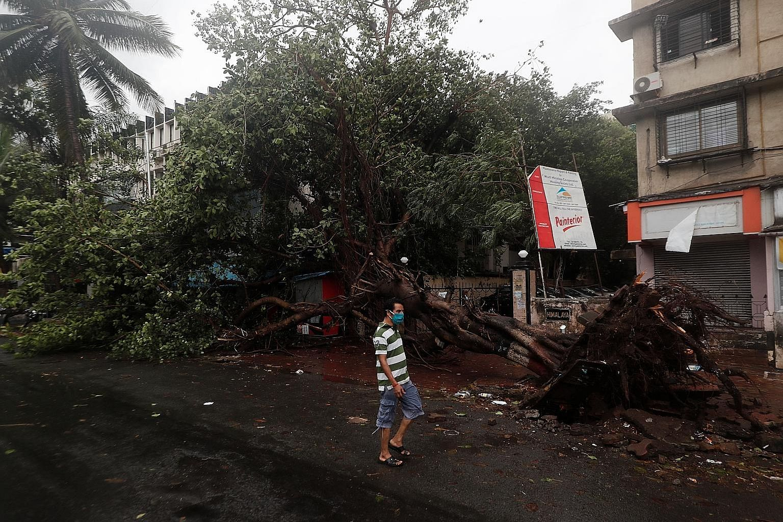 Above, left: Strong winds toppled some trees in Mumbai, which also experienced downpours throughout the afternoon yesterday, after Cyclone Nisarga made landfall about 100km south of India's financial capital. Left: A team from India's National Disast
