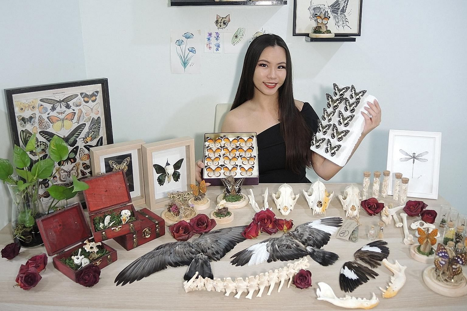 Ms Vivian Tham, who is pursuing a master's degree in pathology, preserves specimens such as bees, butterflies, mice and dead pets, and sells her works on Carousell.