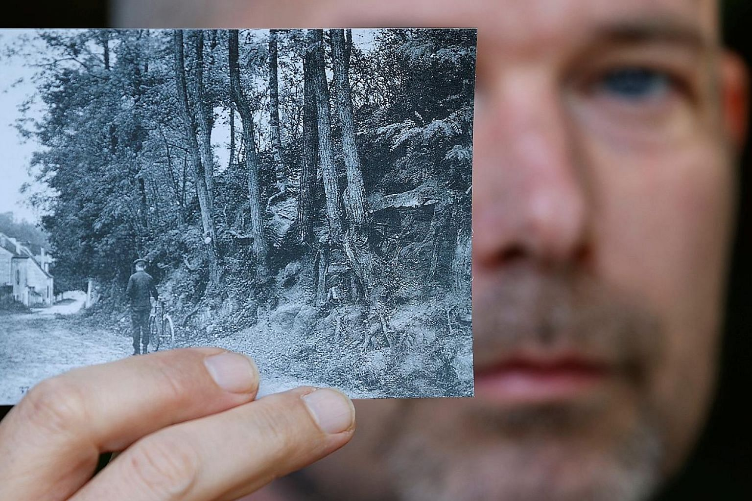 Researcher Wouter van der Veen, scientific director at the Van Gogh Institute, showing a copy of the postcard (left) which enabled him to identify the location of Vincent van Gogh's final painting, Tree Roots (below).