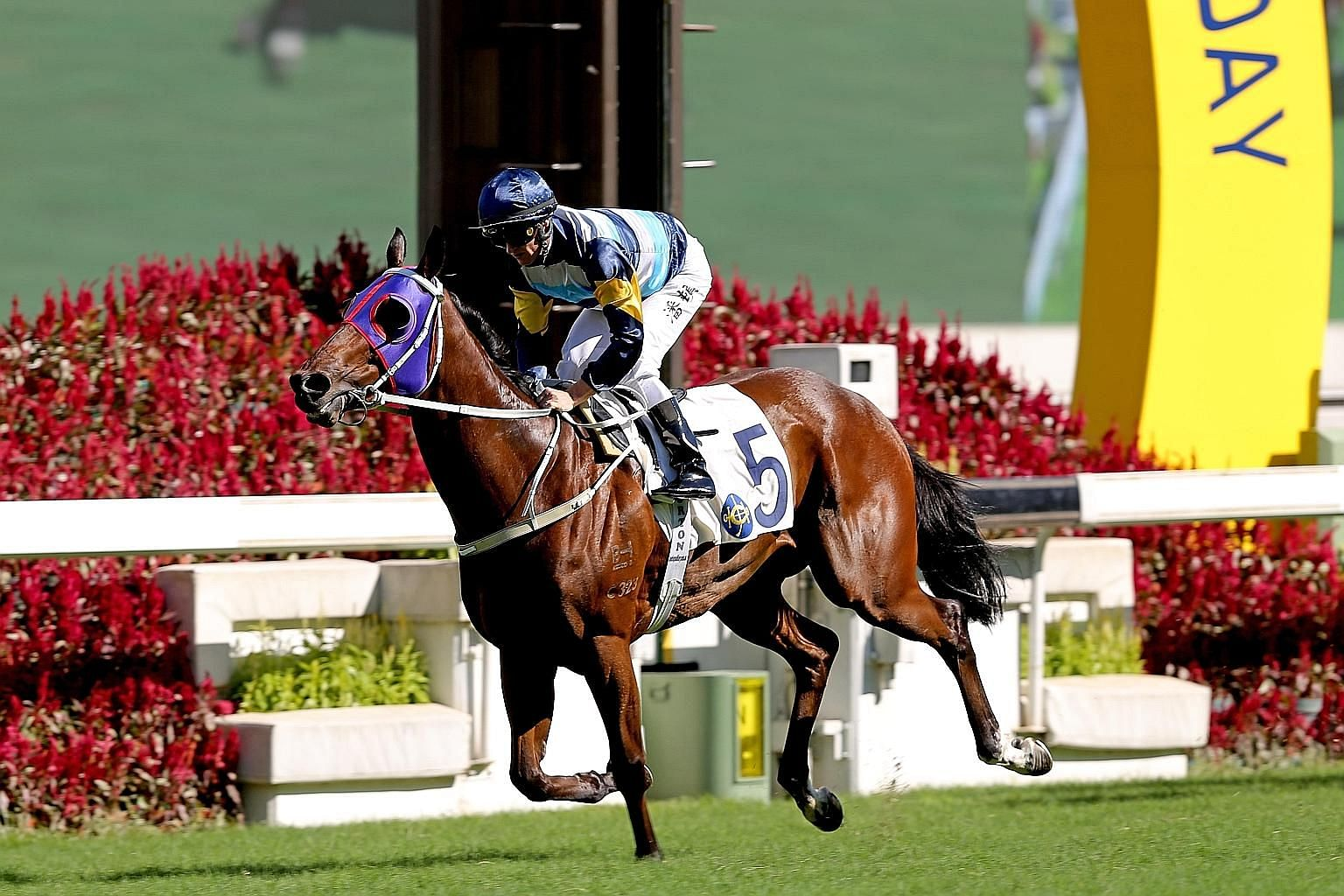 Champion jockey Zac Purton steering Mr Aldan to an easy three-length victory in his last race on July 12. The combination looks hard to topple again in tomorrow's Race 4 at Sha Tin.