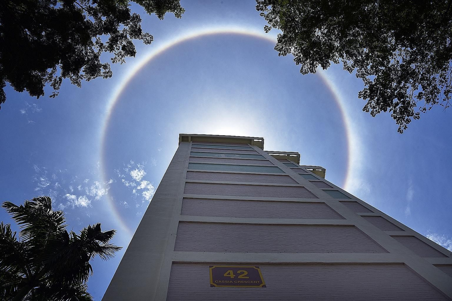 A sun halo seen from a Housing Board block near Guillemard Road at about 12.15pm yesterday. The weather phenomenon occurs when thin clouds are so high in the sky that the water in them consists of ice crystals rather than droplets. These crystals act