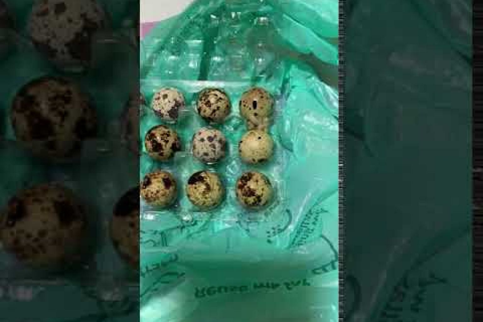Maggots found in carton of quail eggs from Sheng Siong