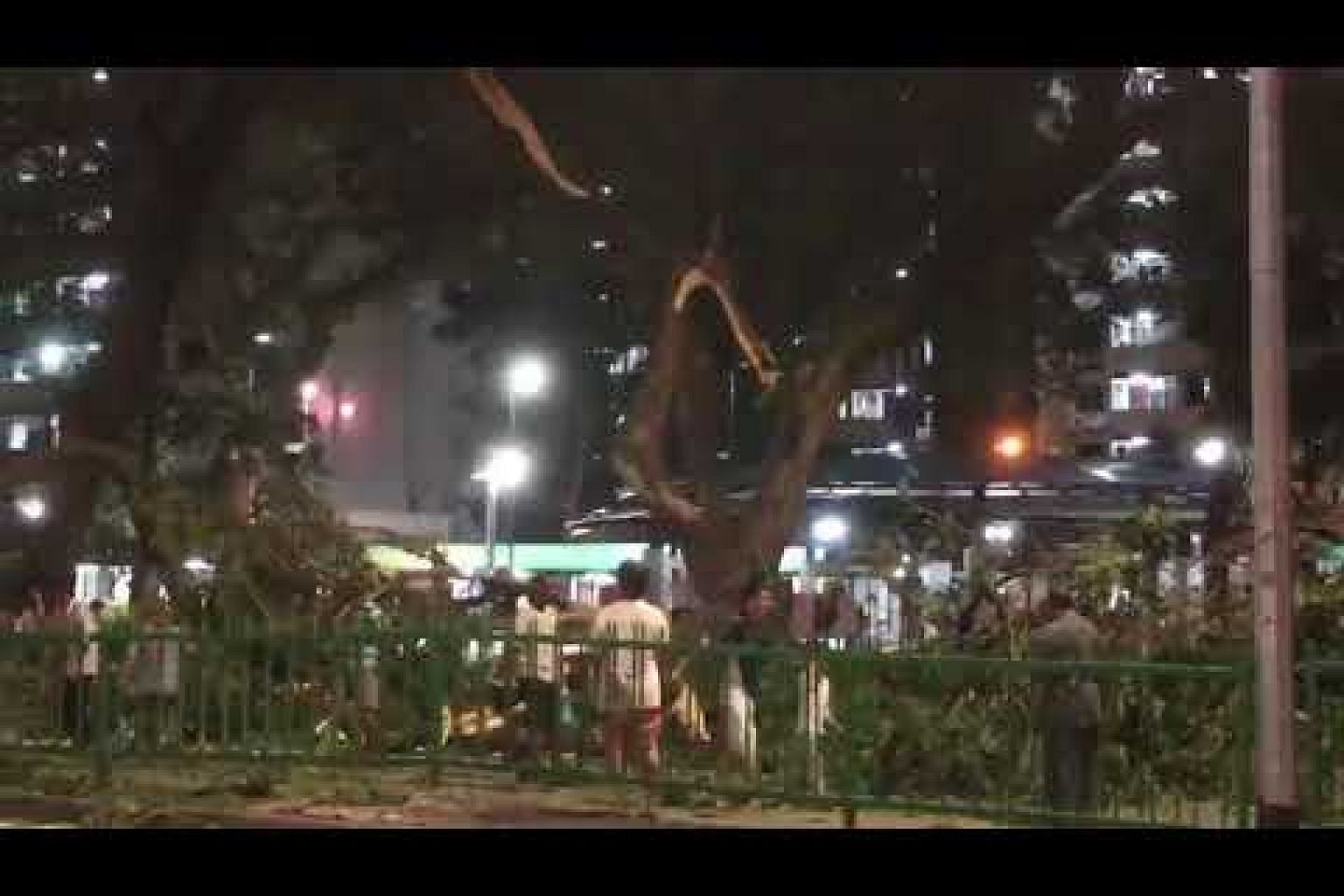 Passers-by help move fallen tree along Ganges Avenue