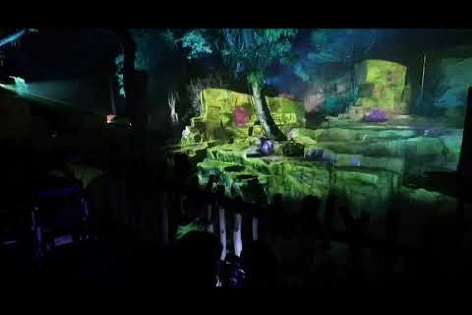 Visitors are treated to a multimedia experience at Rainforest Lumina