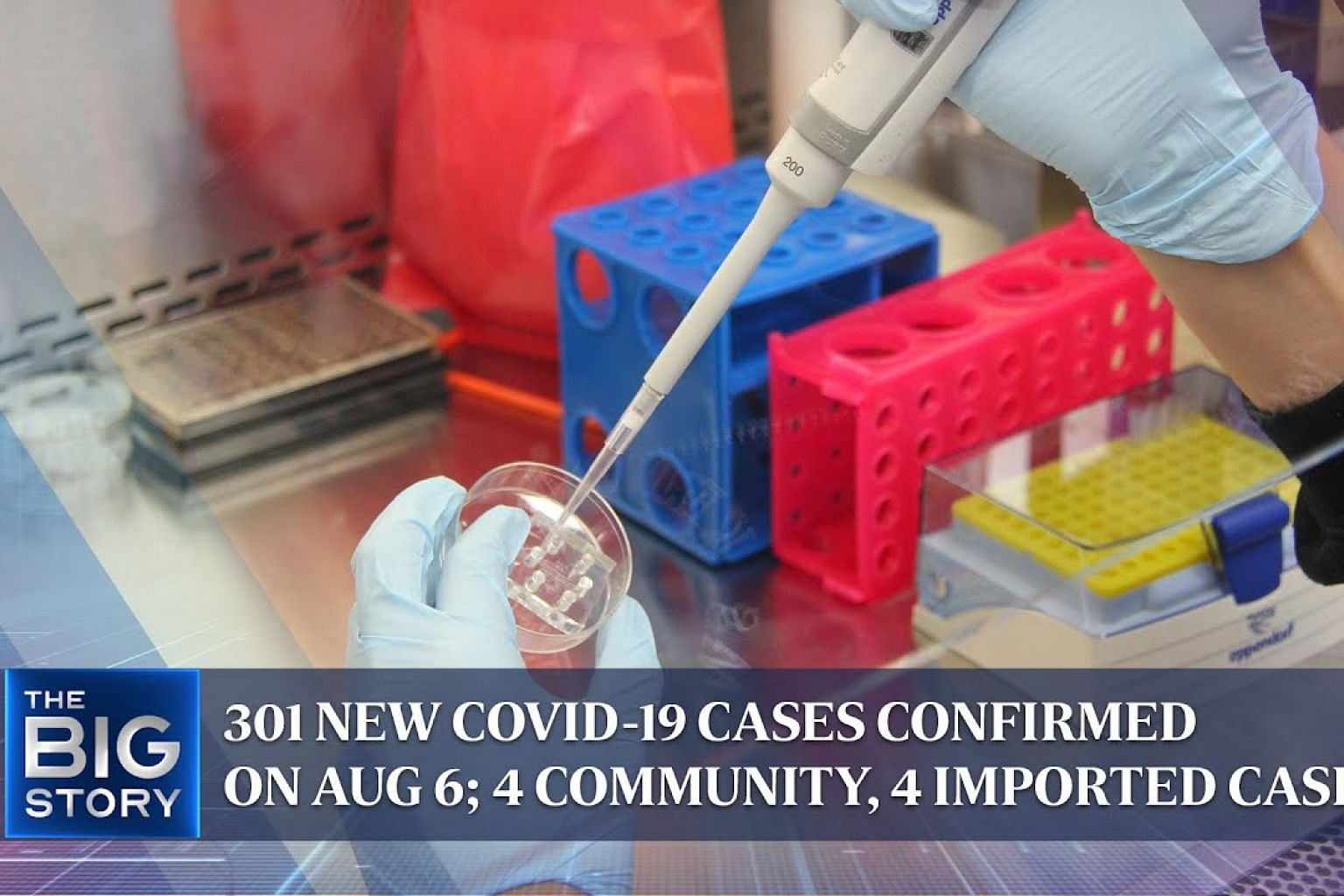 301 new Covid-19 cases confirmed on Aug 6; 4 community, 4 imported cases | THE BIG STORY