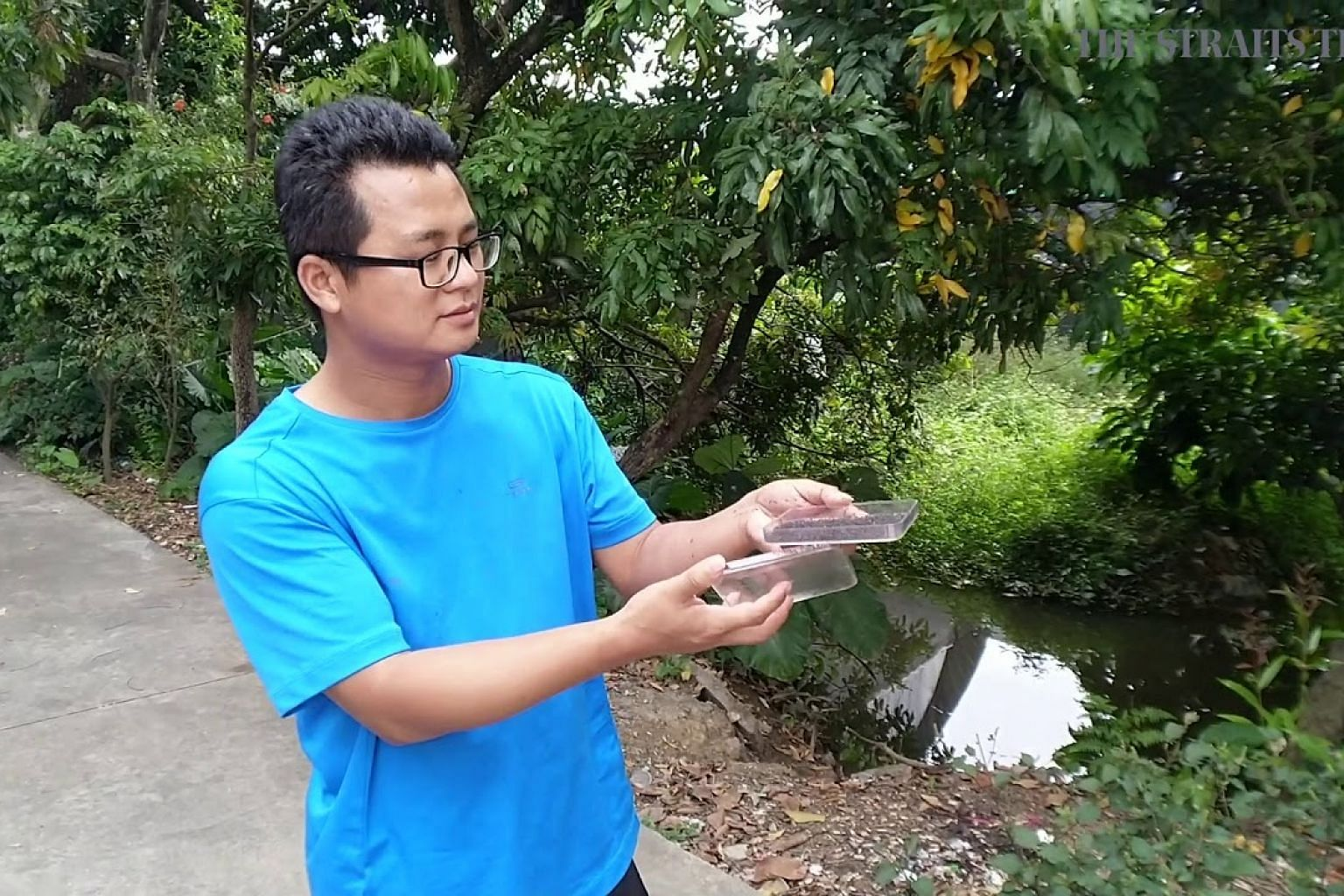 Releasing Wolbachia-infected mosquitoes