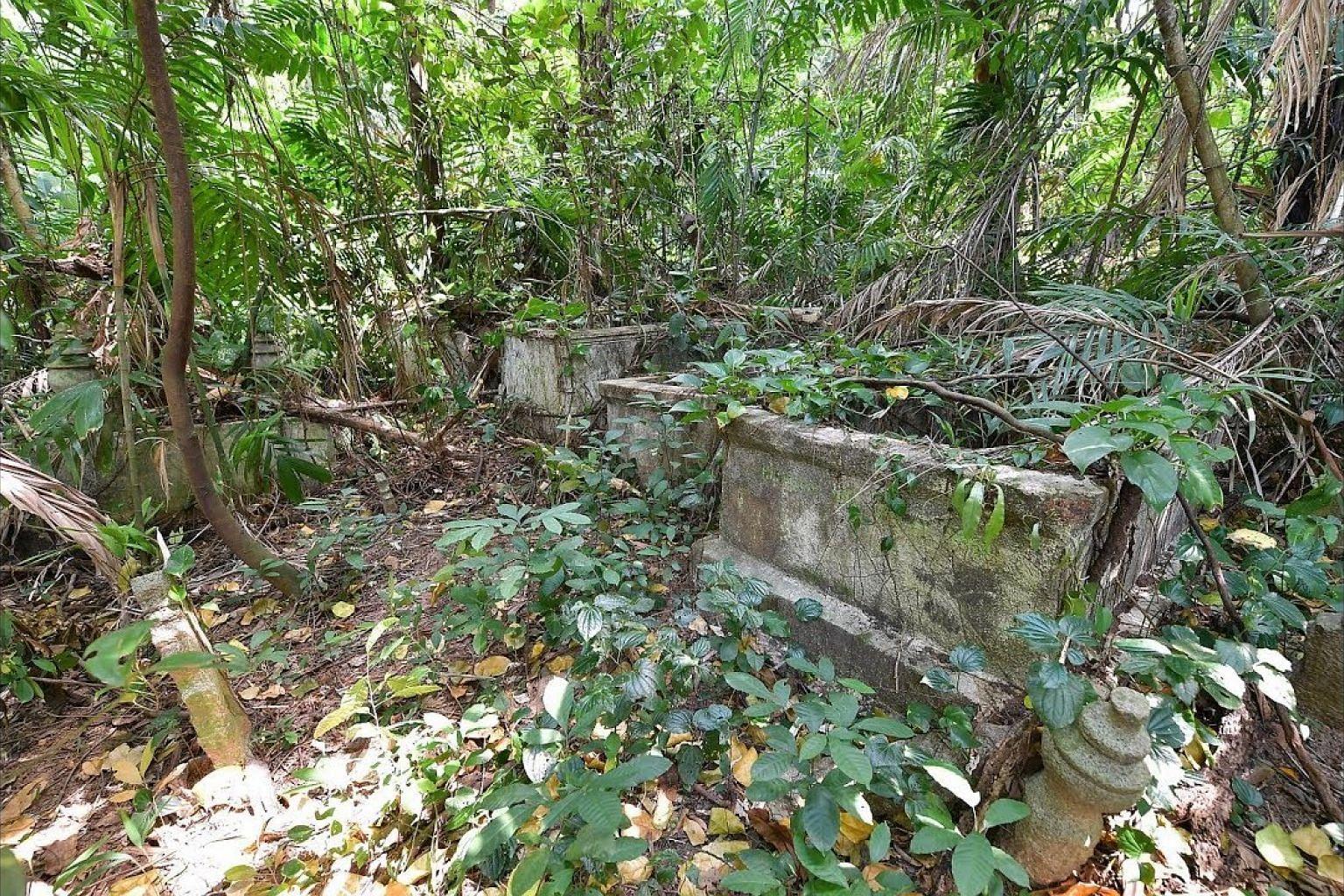 History behind Telok Blangah graves