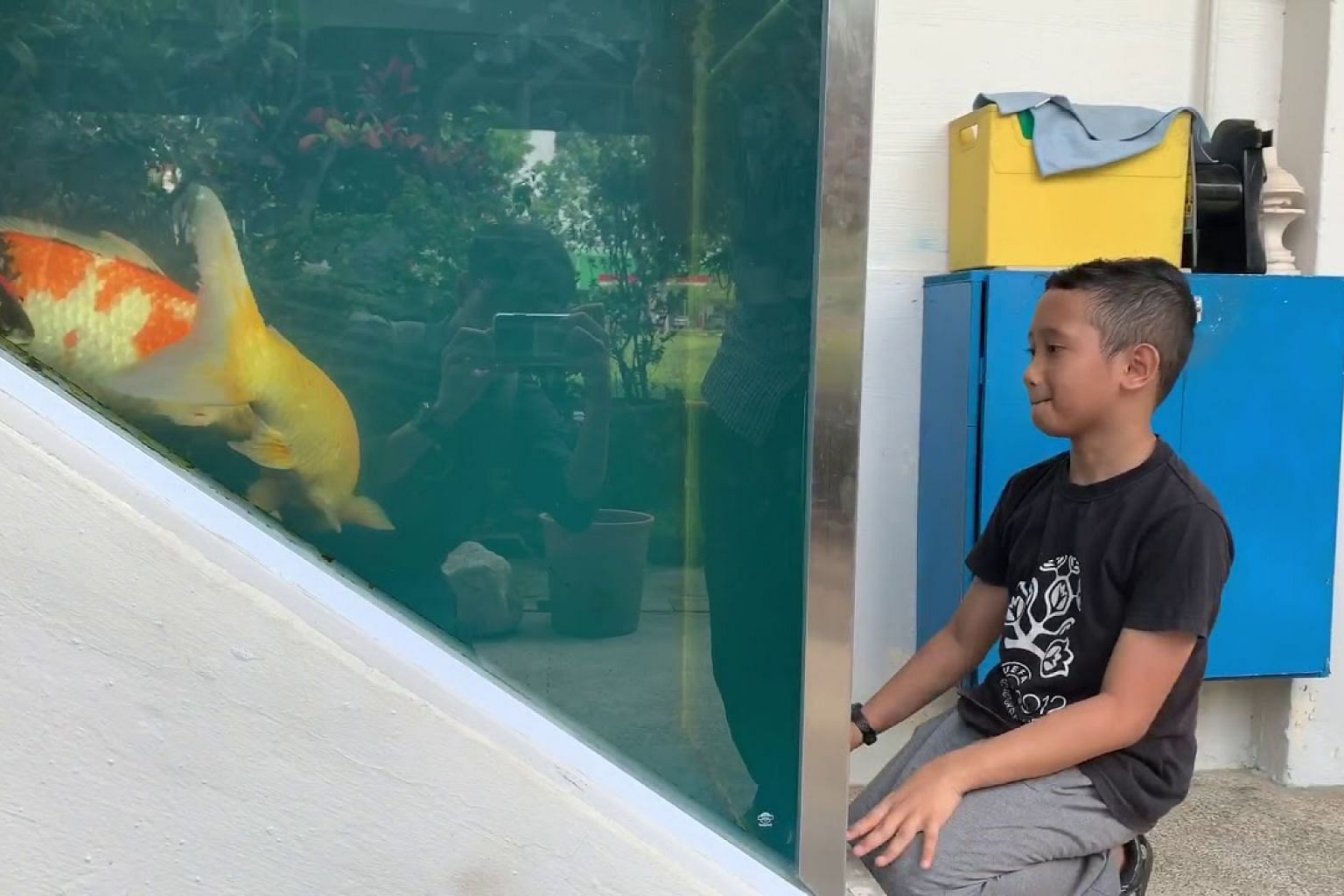 HDB rejects owner's appeal to keep unusual koi fish tank outside Tampines flat