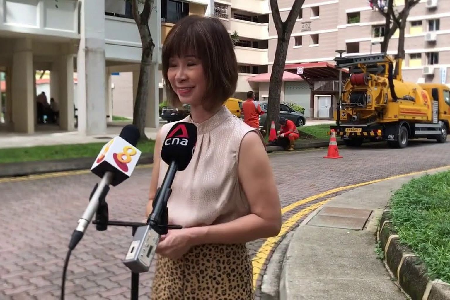 Dr Amy Khor gives a statement after joining Chua Chu Kang Town Council's vector control operations