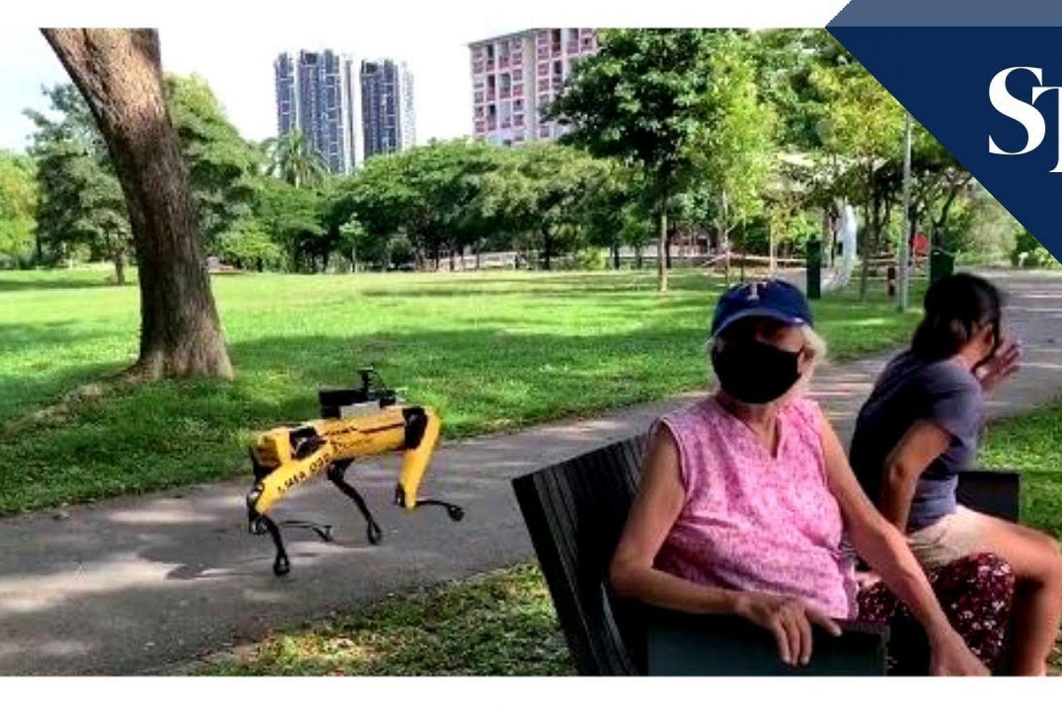 Spot robot patrolling Bishan-Ang Mo Kio Park
