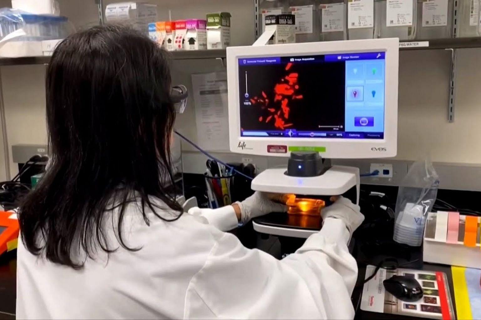 Drugmakers see long road ahead in coronavirus vaccine race