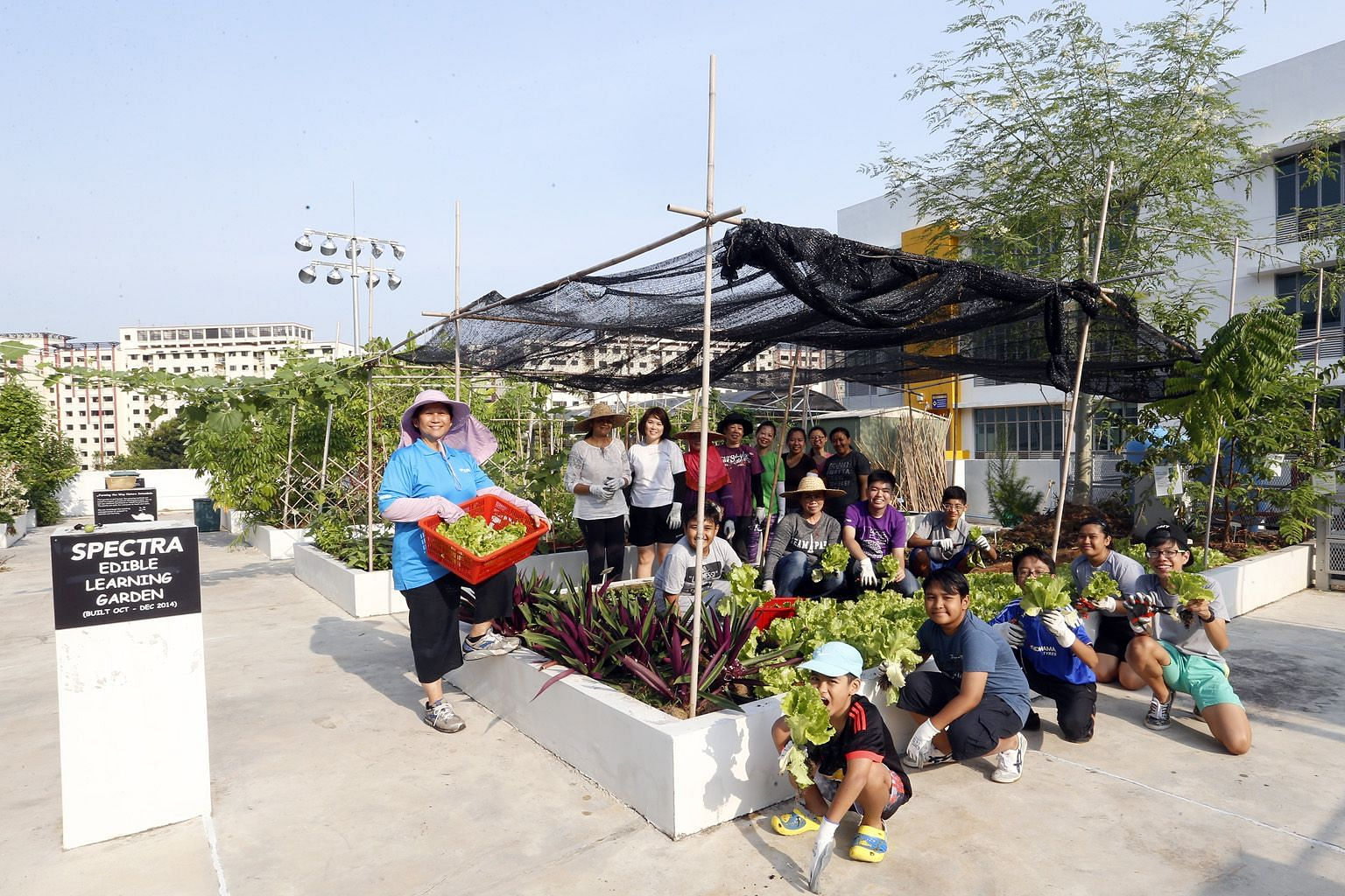 Parents and student volunteers tend the garden on weekends and are supervised by school staff developer Lyvenne Chong (far left). Mrs Chong conceptualised the gardening programme and found that gardening could give students who are less academically