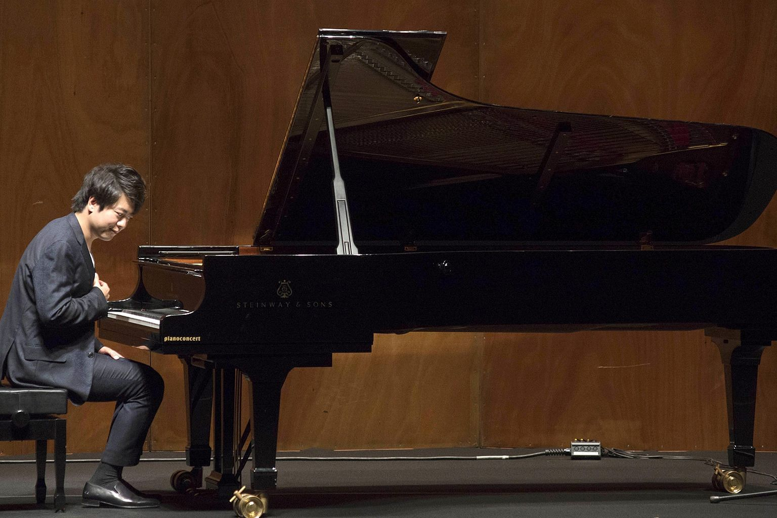 Steinway has pitched its pianos both as durable instruments and luxurious artifacts. It has recruited celebrities like Lang Lang, who is one of China's most prominent classical musicians and has a rock star flair, to offer endorsements, which carry s