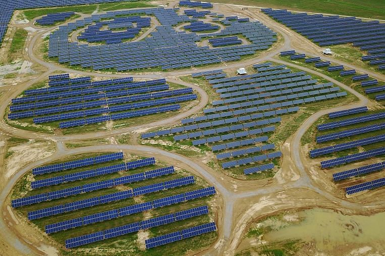 Pawsibly The Cutest Solar Farm Chinese Firm Pandas To