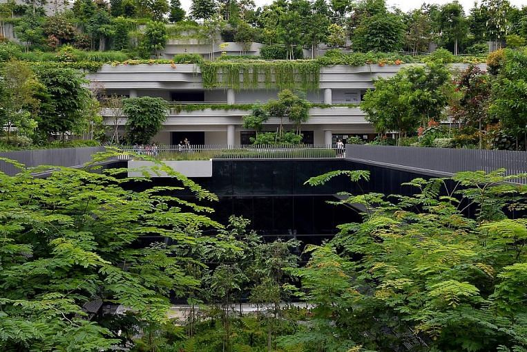 more rooftop gardens  urban farms planned  environment news  u0026 top stories